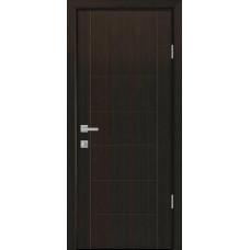 Дверь Рина PLUS